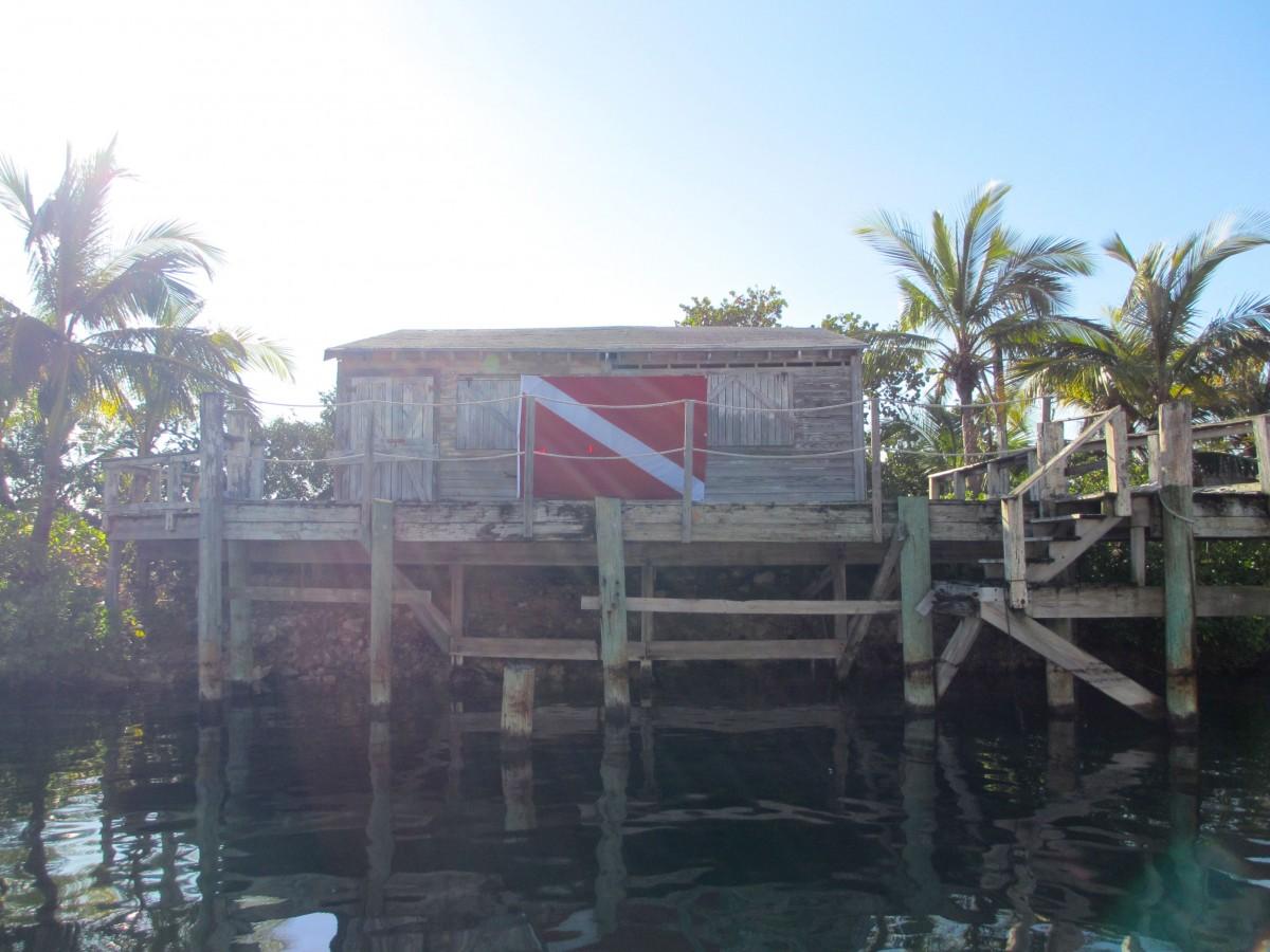 Stuart's Cove