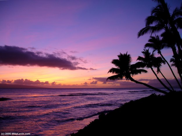 sunset-in-paradise