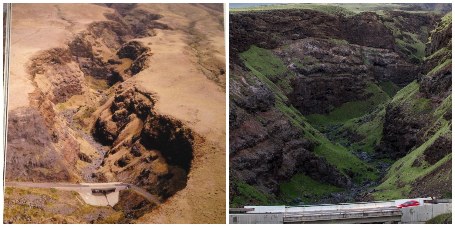 The photo on the left is from Maui Revealed--on a typical South Maui day. The photo on the right is my photo of the same section of road.