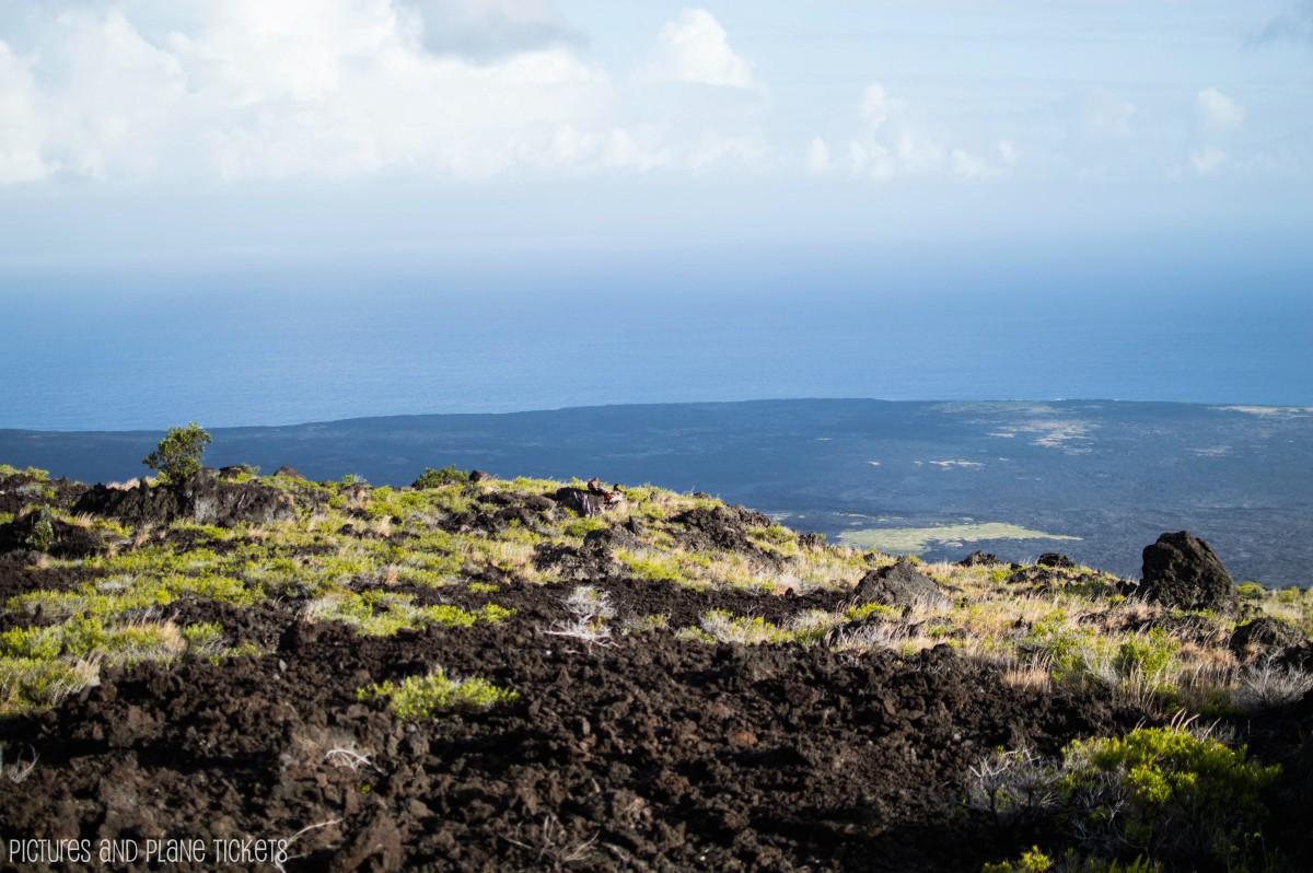 VolcanoNP11-1