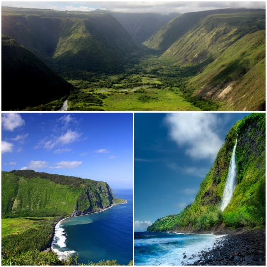 Waipio Collage