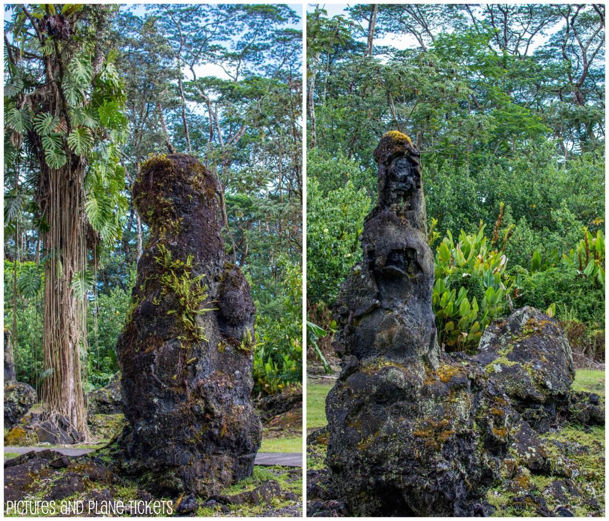 Lava Tree Collage