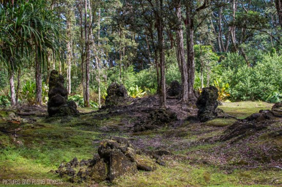 Lava Trees3-1