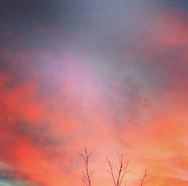 Pink Sky Sunset