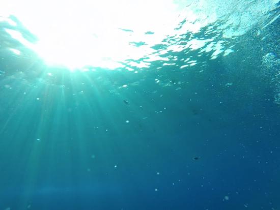 Molokini Snorkel